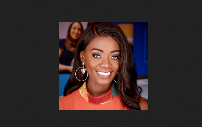Faith Abbey is an Emmy Award-winning investigative journalist. She also received the 2020 Knight TV Data Fellowship Award from the Investigative Reporter and Editors, Inc.